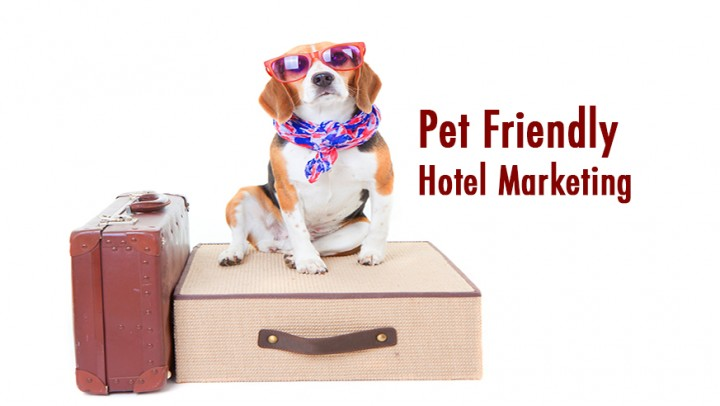 Pet Friendly Hotel Marketing
