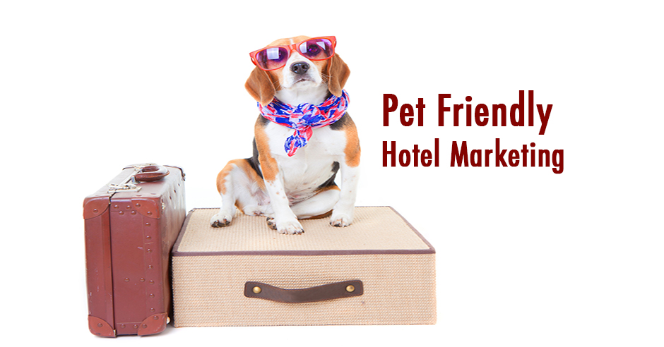 Pet Friendly Hotel Marketing Pet Friendly Hotel Chains